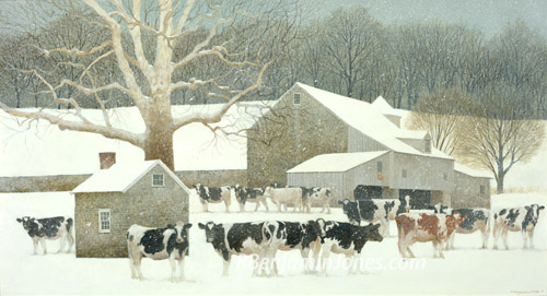 Herd In Snow