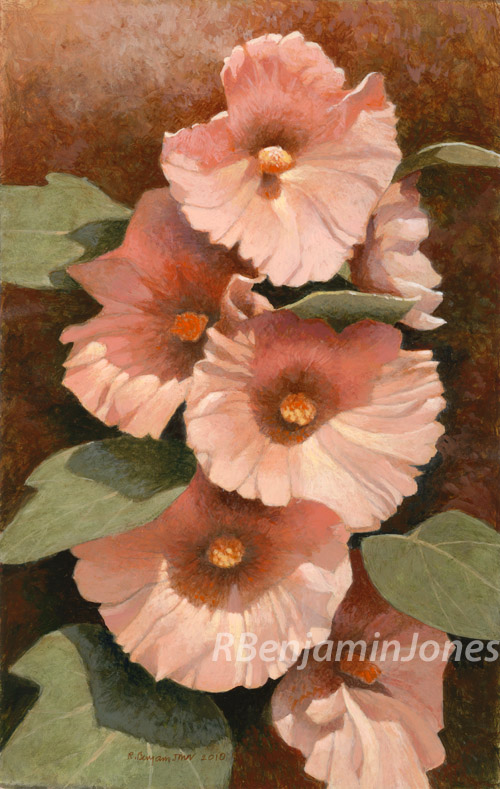 Peach Hollyhock